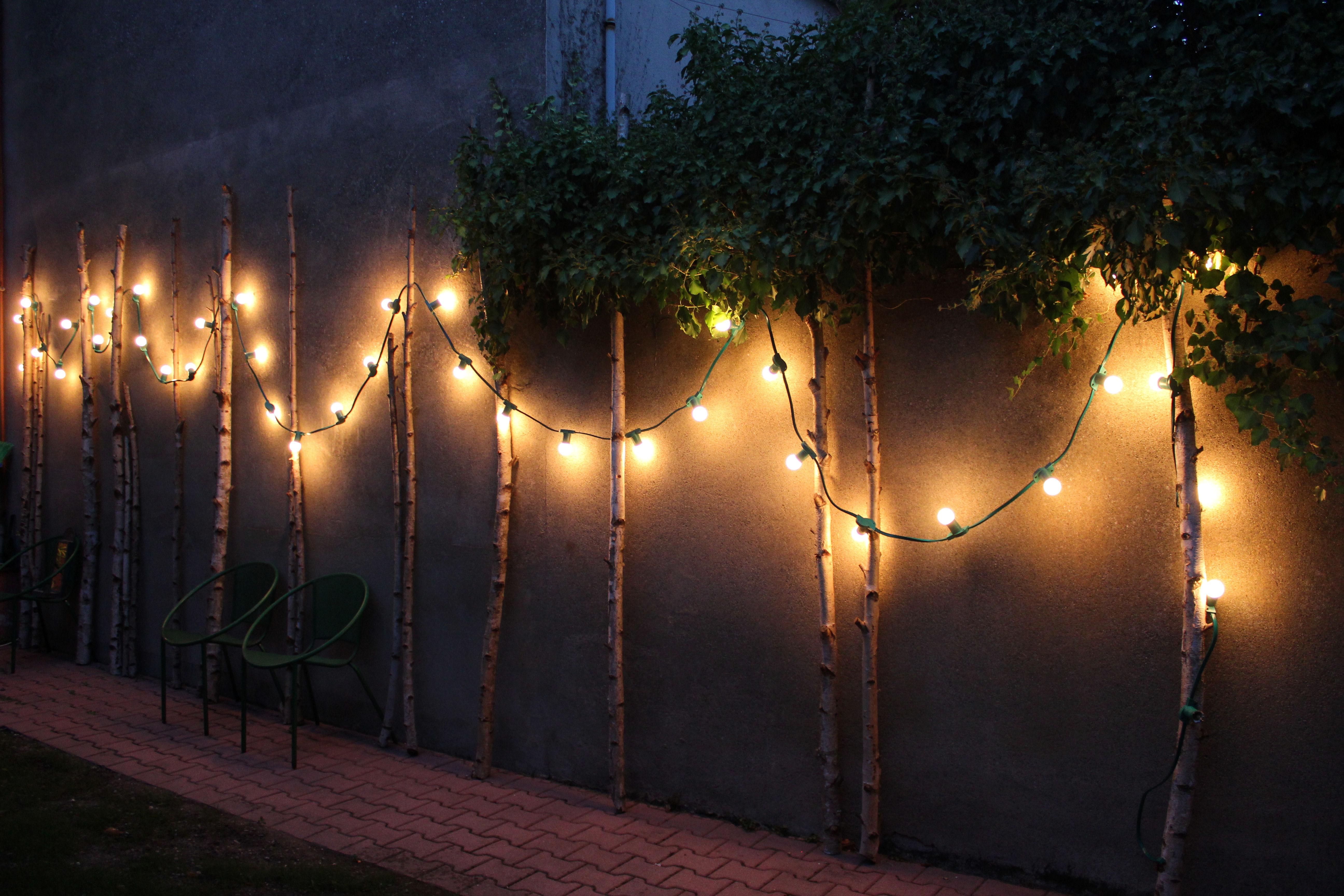 diy bouleaux et guirlande lumineuse poppy figue flower. Black Bedroom Furniture Sets. Home Design Ideas