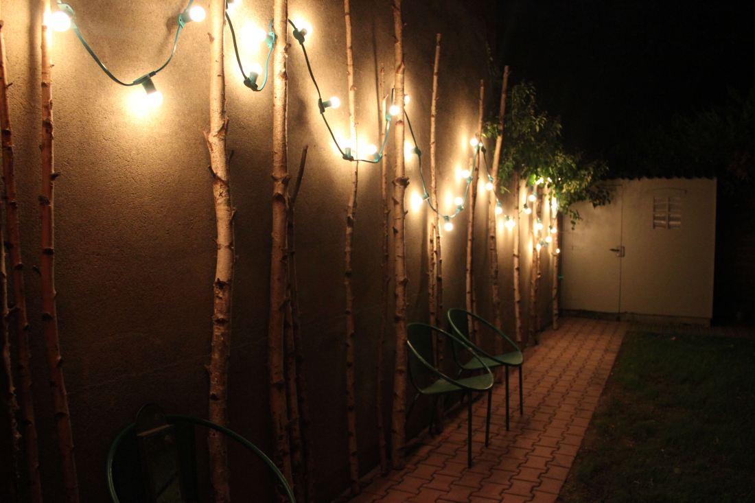 Comment Accrocher Une Guirlande Lumineuse Au Mur diy – bouleaux et guirlande lumineuse – poppy figue flower